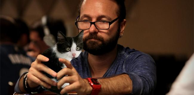 Cell Phones Replaced with Kittens at World Series of Poker