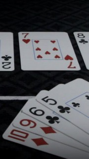 Pot Limit Omaha Cards and Chips